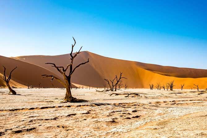 沙漠, 人造雨, LiFe生活化學, 知識文章
