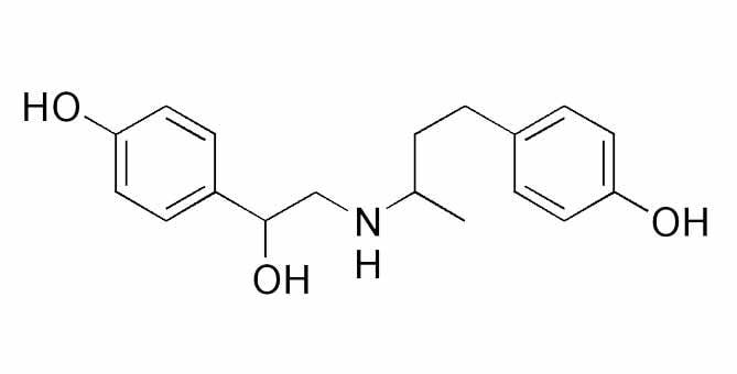 萊克多巴胺, 瘦肉精, 知識文章, LiFe生活化學