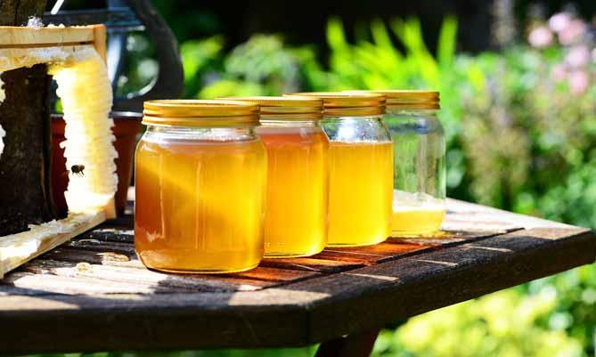 LiFe生活化學,知識文章,甜,過期,保存期限,學知識,蜜蜂,花,花蜜,酶,燃料,蜂蜜,透明度,顏色,口味,市售