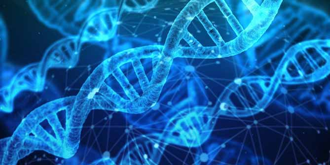 2020諾貝爾化學獎, 基因編輯技術,CRISPR/Cas9.諾貝爾獎, LiFe生活化學