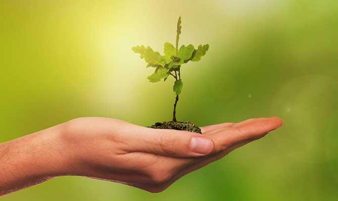 環境, 環保, 知識文章, LiFe生活化學